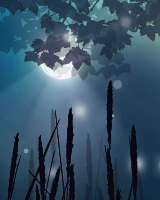 月夜の中を幻想的な蛍が飛び交うブログパーツです。月は月齢表示をすることができます。